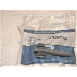Speedometer Driven Gear, New GM 3987922.  71-77 GM Cars
